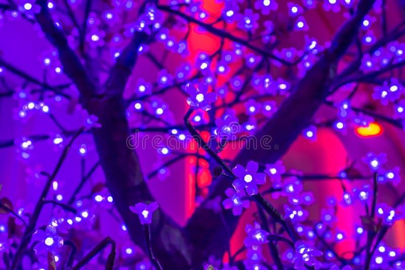 Ledd ljus sakura konstgjord blomma på träd på natten royaltyfri foto