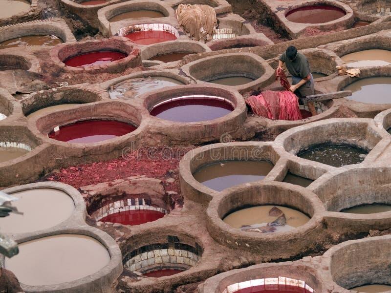 Lederne Gerberei in Fez, Marokko stockbilder