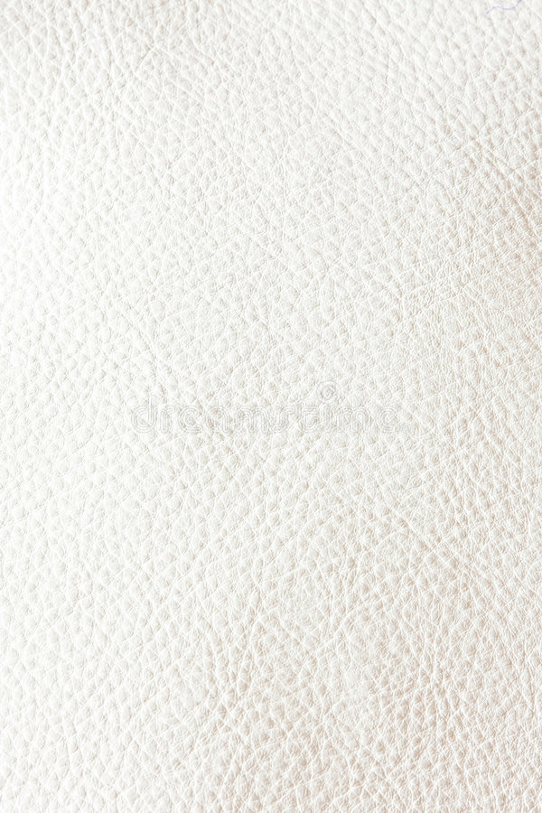 Ledernes Weiß stockfotografie
