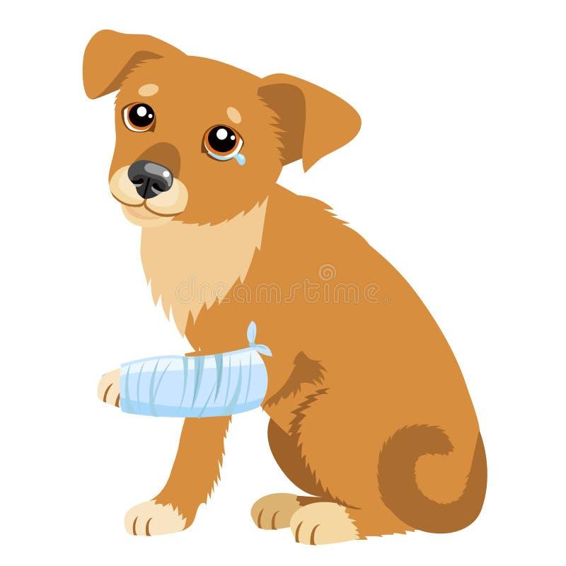 Ledsen hundberättelse Vektorillustration av den gulliga ledsna hunden eller valpen Sjuk hund med att spjälka benet Veterinär- tem royaltyfri illustrationer