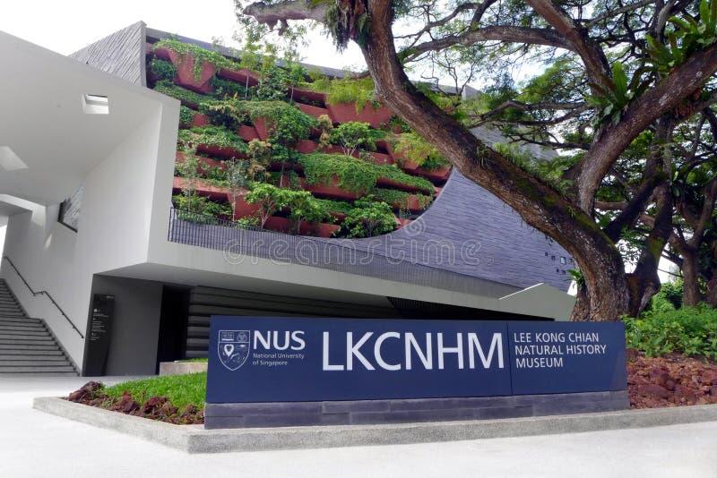 Lee Kong Chian Natural History-Museum, Singapur stockbilder