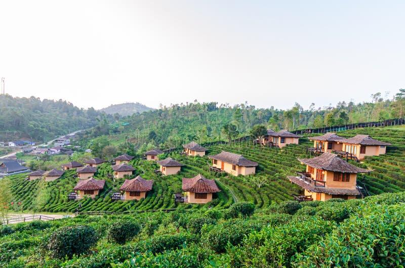 Lee Wine Ruk Thai, huis van de de stijlklei van Yunnan het Chinese in het midden van theeaanplantingen en koud weer in de bergen  royalty-vrije stock fotografie