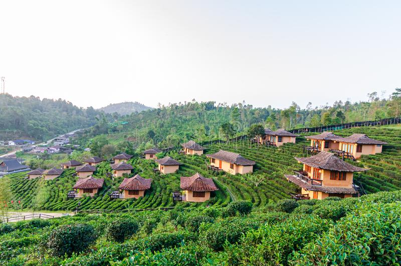 Lee Wine Ruk Thai, Yunnan Chinese style clay house amidst tea plantations and cold weather in the mountains of Mae Hong Son, royalty free stock photography