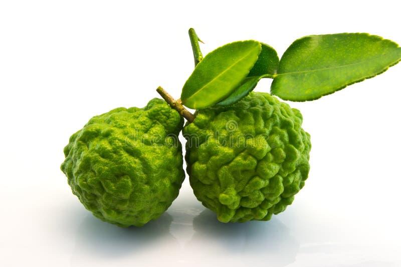 Leech Lime Or Bergamot. Fresh two Bergamot on white background stock image