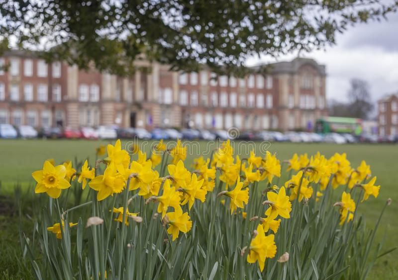 Leeds Beckett University stock image