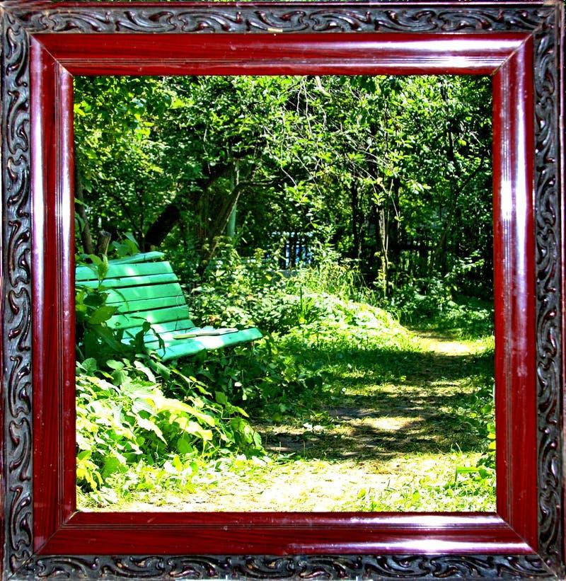 Leef beeld van het de zomerpark stock afbeeldingen