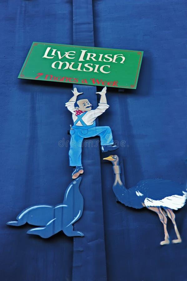 Leef Ierse muziek royalty-vrije stock afbeelding