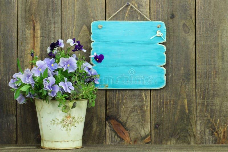 Leeg antiek blauw teken door pot van purpere bloemen (pansies) royalty-vrije stock foto's
