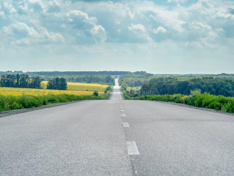 Leeg asfaltweg en landschap van gele gebieden en groene bomen bij de zomer Bewolkte die hemel met groot wit wordt behandeld stock afbeelding