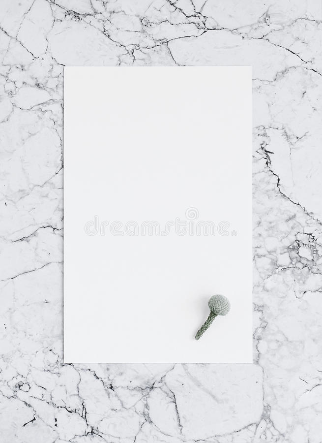 Leeg blad van Witboek op marmer met bruniabloem Model royalty-vrije stock afbeeldingen