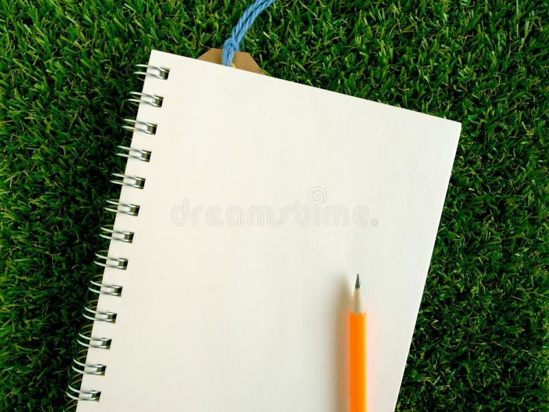 Leeg boek en oranje potlood op kunstmatig gras royalty-vrije stock foto's