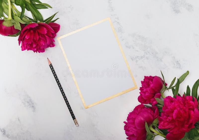 Leeg document model met pioenen stock foto's