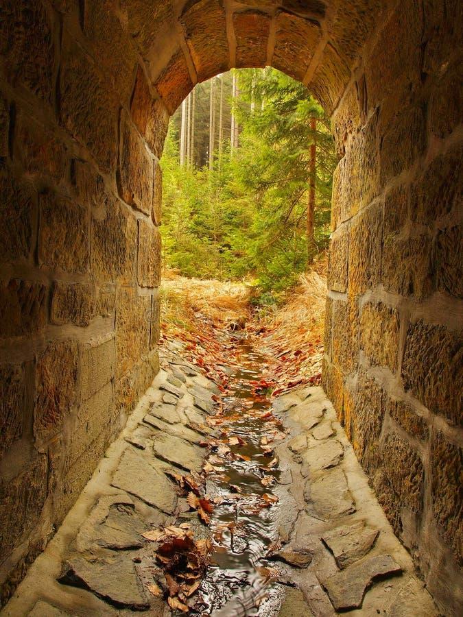 Leeg drainagekanaal in tunnel, bosbuitenkant. Steenachtige muren stock foto