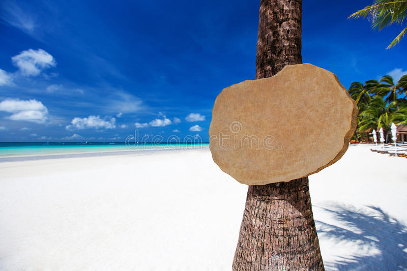 Leeg houten uithangbord op de palm op tropisch strand royalty-vrije stock afbeeldingen