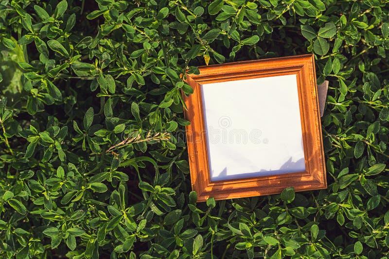 Leeg kader in het gras in openlucht royalty-vrije stock fotografie