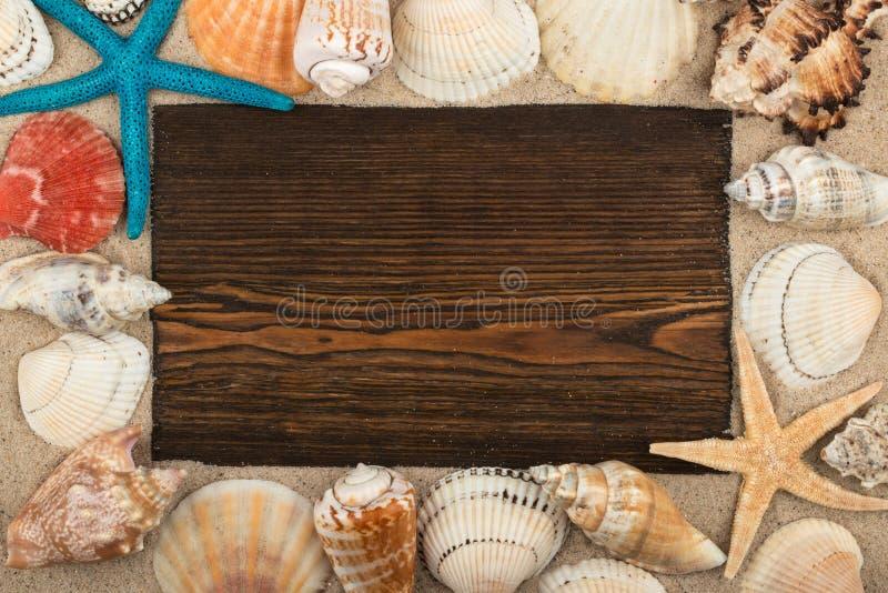Leeg kader van donkere hout, zeeschelpen en zeester in het zand Met ruimte voor uw tekst royalty-vrije stock foto