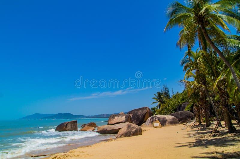 Leeg Palm Beach in Sanya stock foto