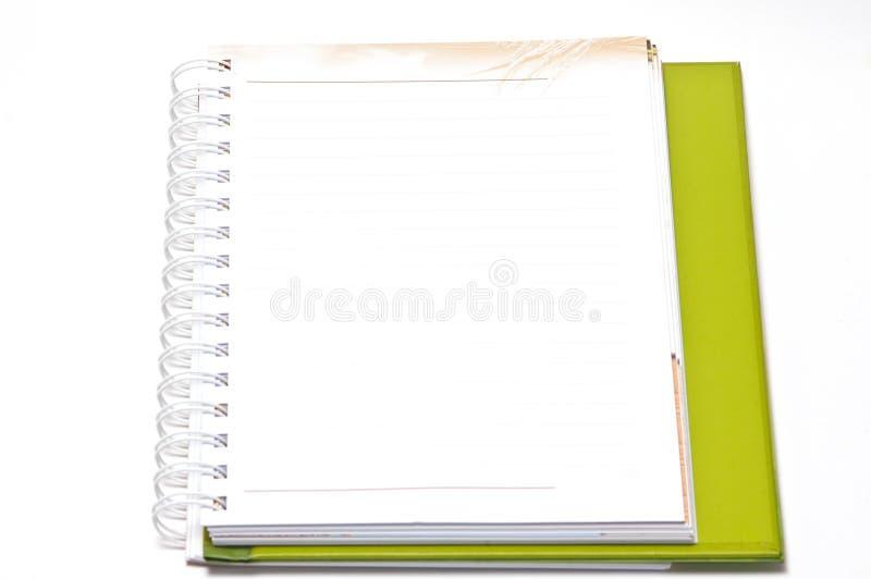 Leeg Spiraalvormig die Notitieboekje met Lijndocument op een Witte Backgr wordt geïsoleerd stock fotografie