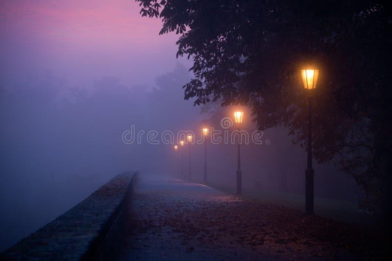 Leeg voetpad in ochtendmist met gekleurde zichtbare hemel stock foto's