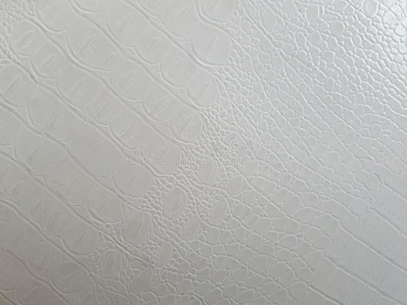 Leeg Wit Albino Reptile Leather Texture Background royalty-vrije stock foto