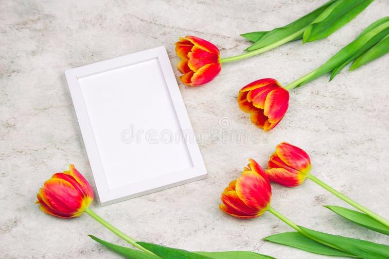 leeg wit kader en tulpenkader op een marmeren achtergrond royalty-vrije stock foto
