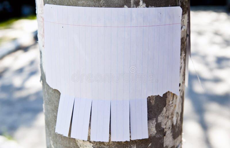 Leeg Witboek met scheur van lusjes royalty-vrije stock afbeelding