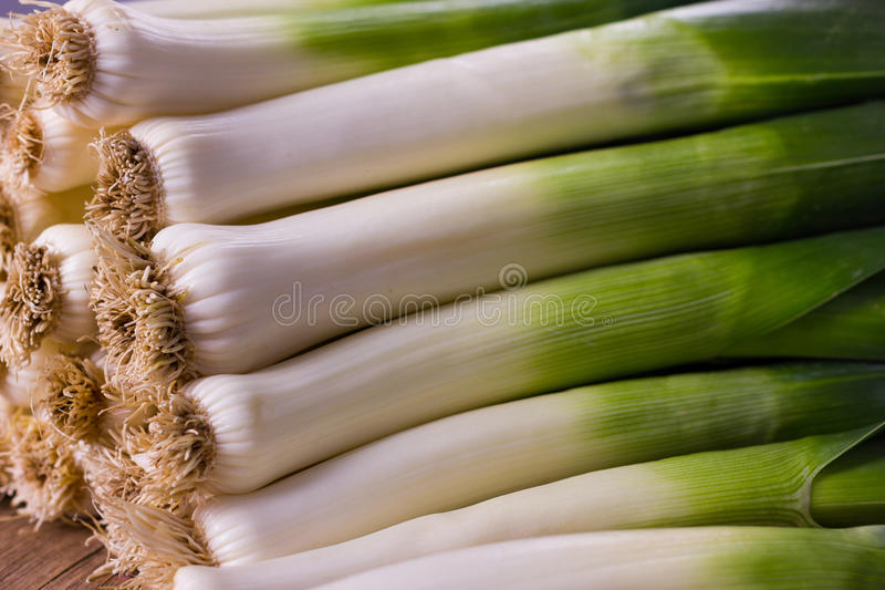 leek foto de stock royalty free