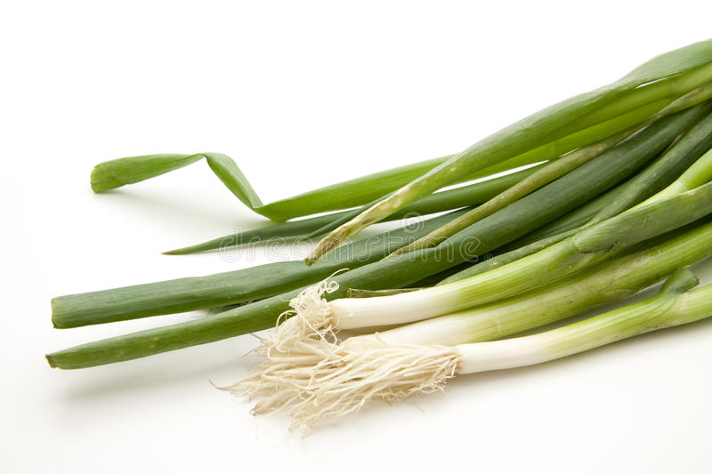Leek onion royalty free stock photos
