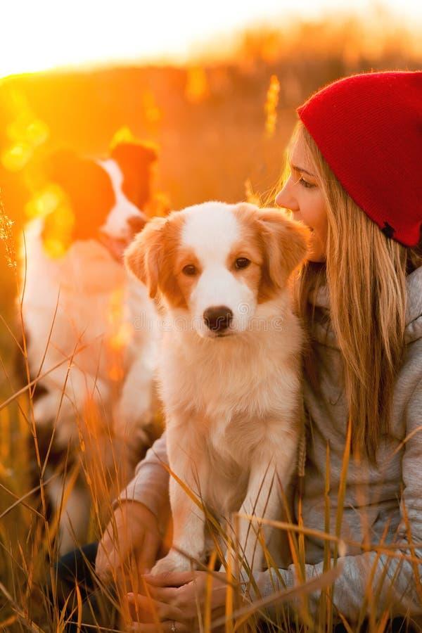 Leendeflickan med den kalla border collie hundvalpen för två lägger på grönt fält himmelsolnedgång på bakgrund royaltyfria bilder