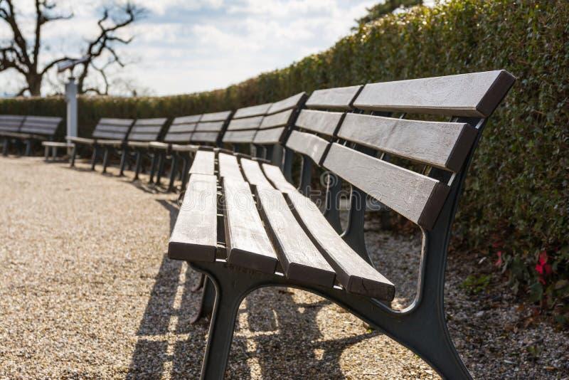 Leere Bank-Reihe bepflanzt Blau der Himmel-Park-Offenen Himmel Sunny Day Beauti mit Büschen stockfotos