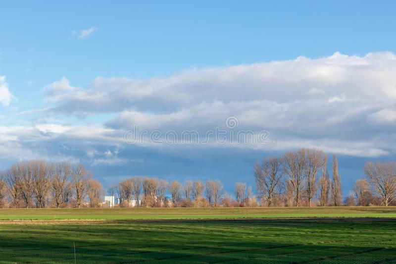 Leere Felder im Winter in der Landschaft Natur in Frankenthal - Deutschland stockfoto
