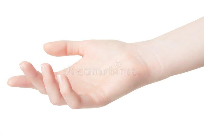 Leere Frauenhand auf Weiß lizenzfreies stockbild