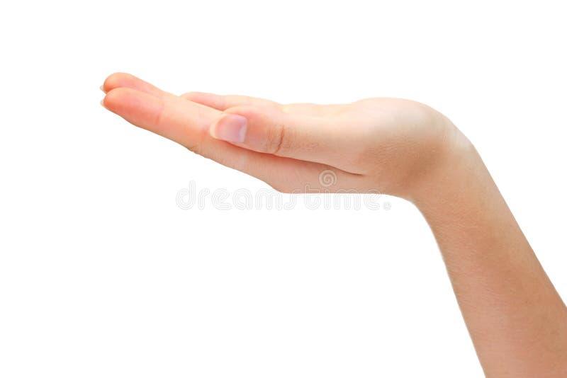 Leere geöffnete Hand getrennt auf weißem Hintergrund stockbild