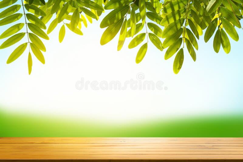 Leere hölzerne Tischplatte auf Unschärfezusammenfassungsgrün vom Gartenhaus an stockbilder