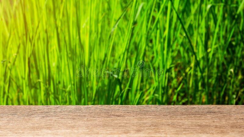Leere h?lzerne Tischplatte auf Unsch?rfezusammenfassungsgr?n vom Garten lizenzfreie stockfotografie