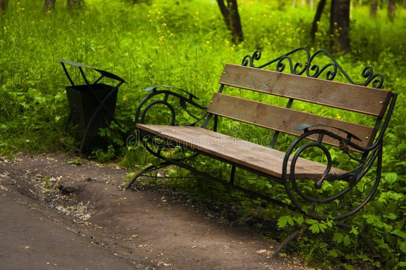 Leere Holzbank im Park neben dem Gras und dem Weg stockfotografie