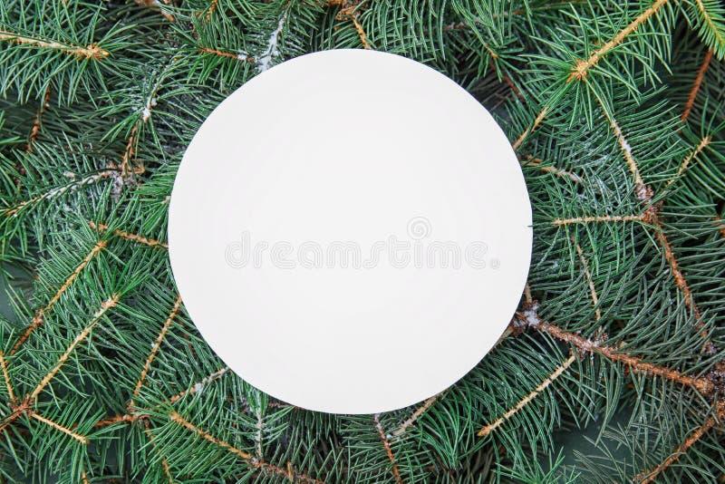 Leere Karte auf Niederlassungen des Weihnachtsbaums lizenzfreie stockbilder