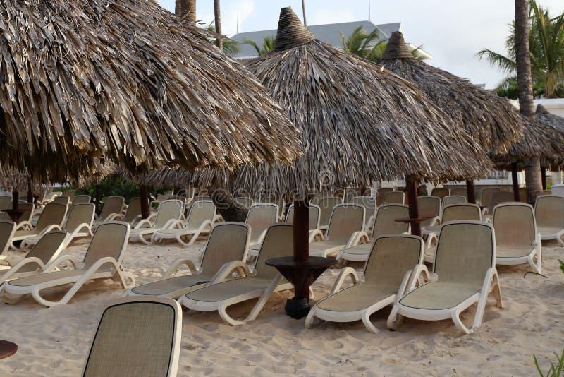 Leere St?hle unter mit Stroh gedeckten Regenschirmen auf einem sandigen Strand vektor abbildung