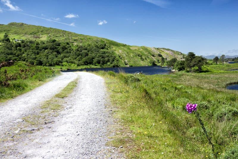 Leere Straße Irland 0023 lizenzfreie stockfotos
