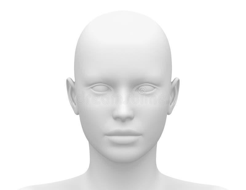 Leere weiße weibliche kopf- Vorderansicht lizenzfreie abbildung
