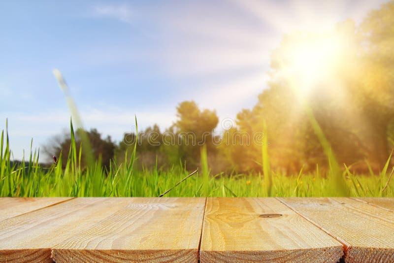 Leeren Sie rustikale Tabelle vor niedriger Winkelsicht des frischen Grases Produktanzeige und Picknickkonzept lizenzfreies stockfoto