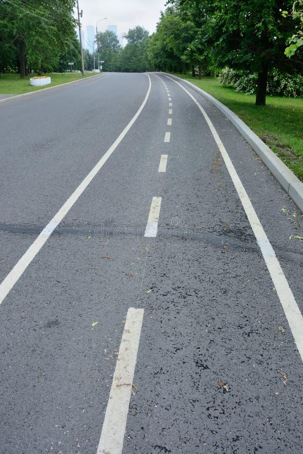 Leerer Fahrradweg im Park, der fern verlässt lizenzfreies stockbild