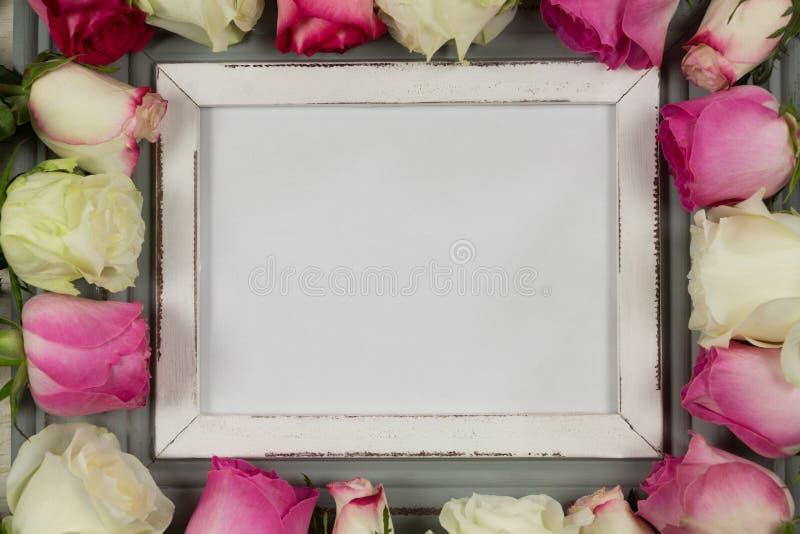 Leerer Fotorahmen umgeben mit rosafarbener Blume stockfotografie