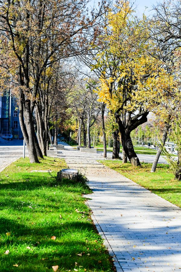 Leerer Park lizenzfreie stockbilder