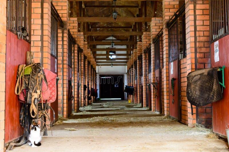 Leerer Pferdestall stockfoto