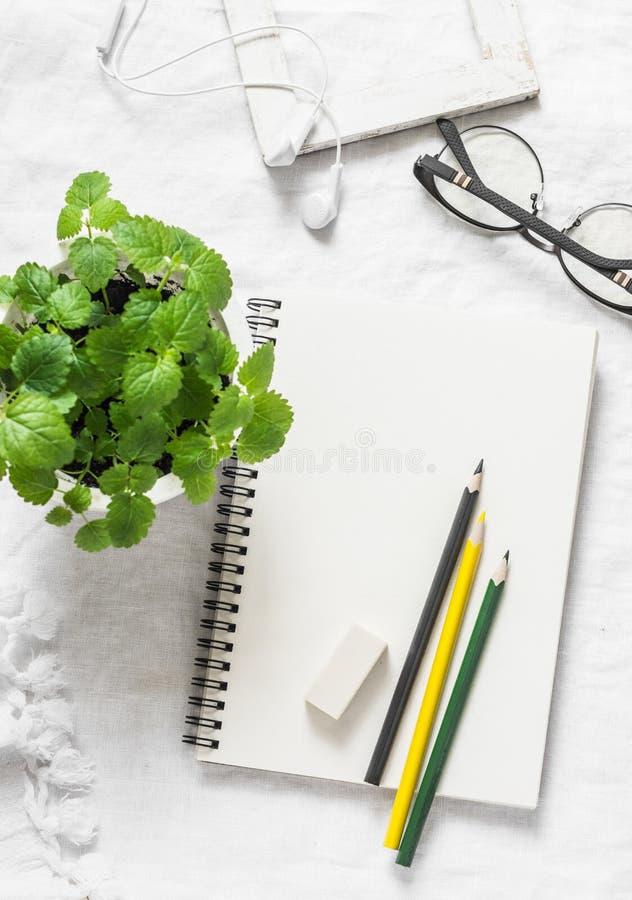 Leerer Sketchbook, farbige Bleistifte, Holzrahmen, Gläser, Kopfhörer und Melisseblumentopf auf hellem Hintergrund, Draufsicht Gem lizenzfreies stockfoto