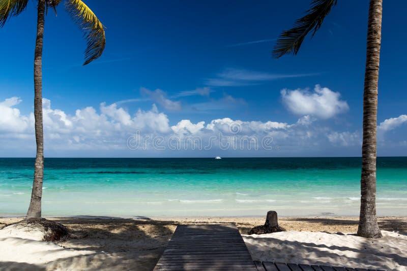 Leerer Strand auf der Insel von Cayo-Cocos mit Palmen. lizenzfreie stockbilder