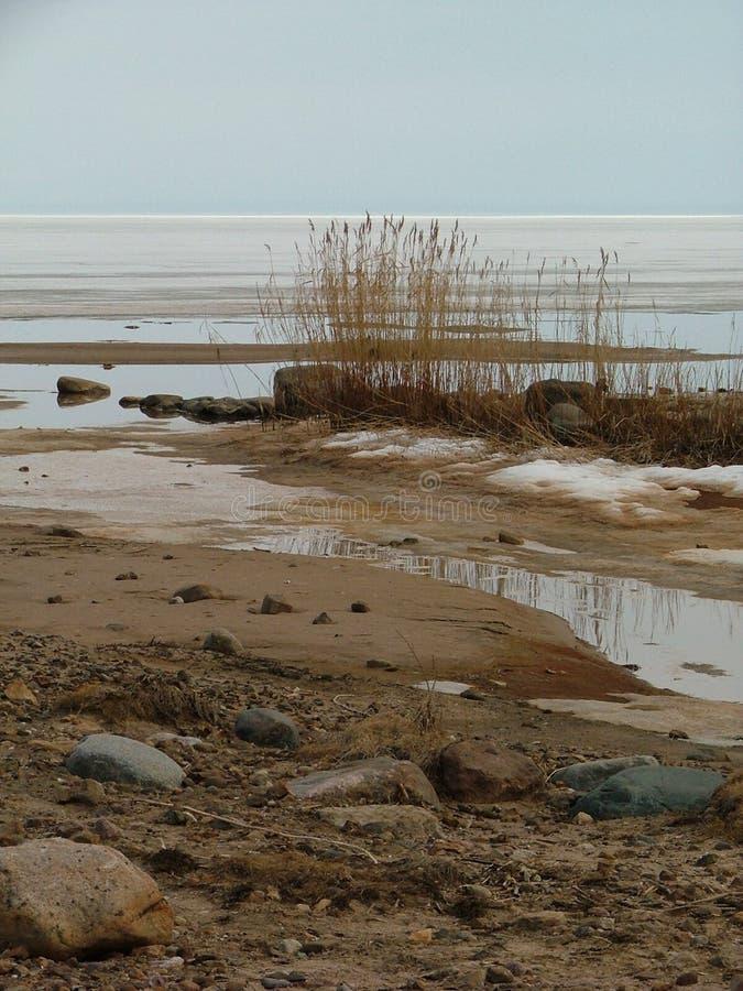 Leerer Strand im frühen Frühling. Estland stockfotos