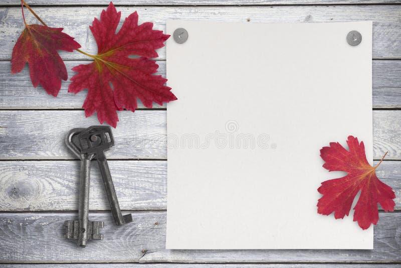 Leeres Blatt Papier und Rot verlässt auf hölzernem Hintergrund stockfotos