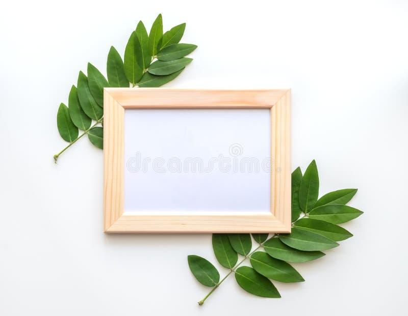 Leeres hölzernes Fotorahmenmodell mit Grün verlässt herum, auf weißem Hintergrund stockbilder